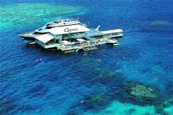 Cairns Discount Reef Trips